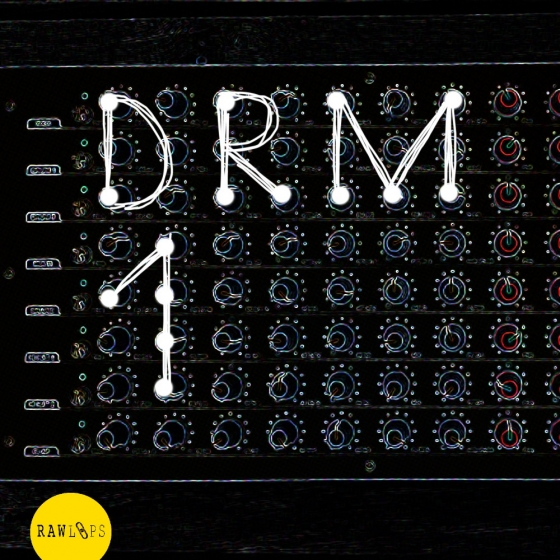 Raw Loops DRM1-Drum Hits WAV